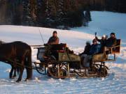 Pferdeschlittenfahrt, Horse, Sleigh Ride, austria
