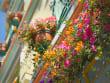 Canada_British_Columbia_Victoria_street_flower_shutterstock_159827717