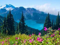 Canada_Whistler_shutterstock_391849615