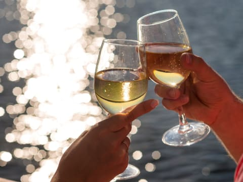 Wine and Champagne Cruise (Cruises, Sailing & Boat Trips