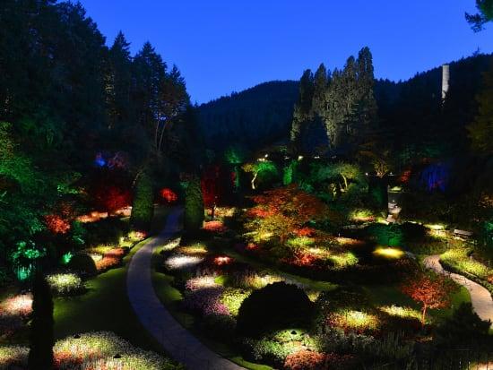 Night Lighting  (1)
