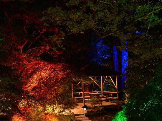 Night Lighting (2)
