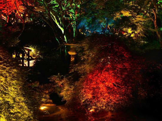 Night Lighting (3)
