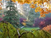 Autumn (5)
