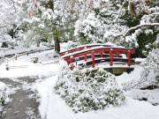 Winter Day - DSC_2251.JPG