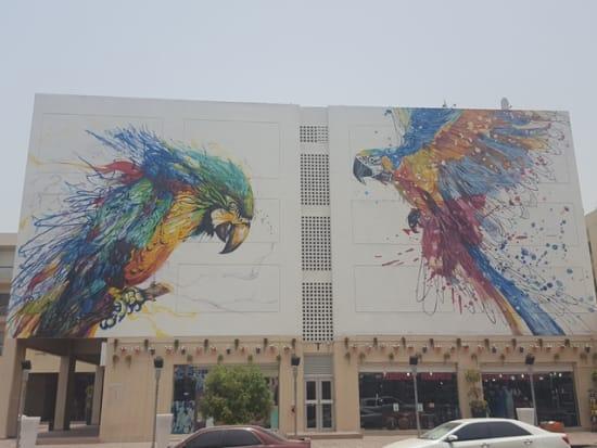 Karama - Colorful Falcon3