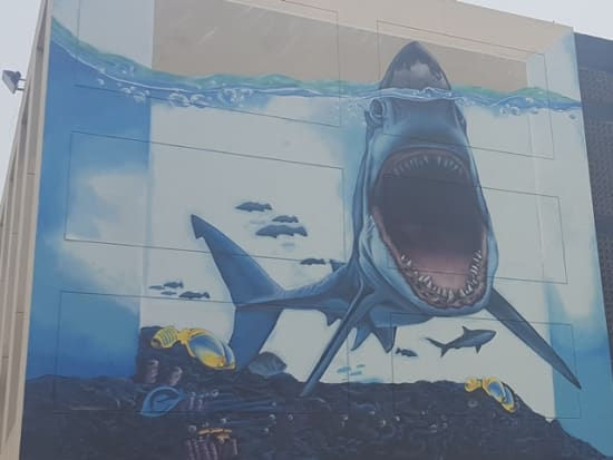 Karama - Shark & stingray