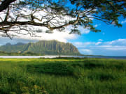 Hawaii_Oahu_Photography Tours_Oahu