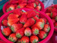 Korea_Busan_Strawberries_shutterstock_496272490