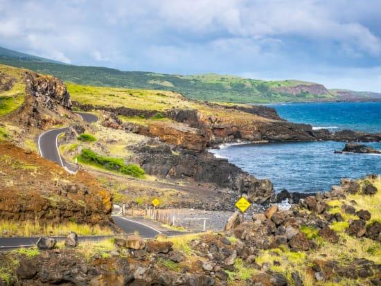 USA_Hawaii_Hana-Highway_shutterstock_634580258