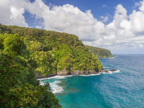 USA_Hawaii_Maui_Northern-Coast_123RF_16987816_ML