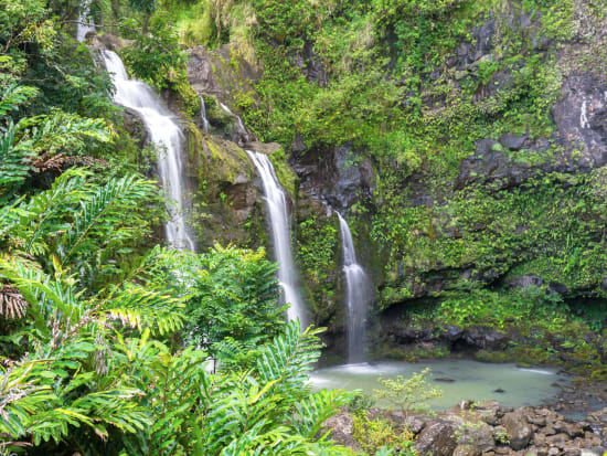 7c0b8af3dd Maui Road to Hana One Day Tour from Honolulu - Rainsforest & Waterfall  AdventureSALE