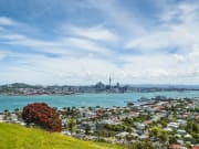 harbour-cruise_landing-pg