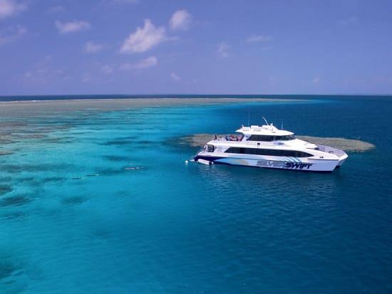 Silverswift cruise great barrier reef snorkeling