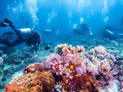 scuba diving great barrier reef australia