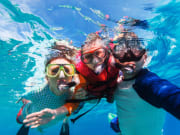 Great Barrier Reef snorkeling guided tour