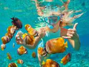 Australia_General_Snorkeling_shutterstock_682