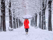 Korea_Nami_Island_Winter_Girl_Shutterstock_345715748