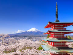 Mt. Fuji pagoda