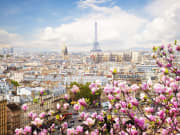 eiffel-city-view-spring-magnolias