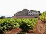 Montserrat-Tapas-wine-4