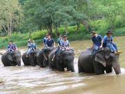 象使い体験1日ツアー002