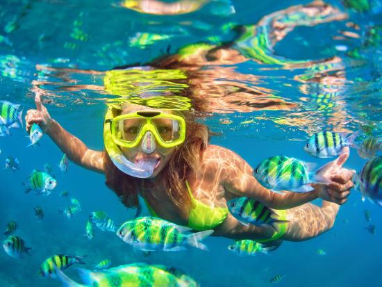 Generic_Snorkeling_Coral Reef_shutterstock
