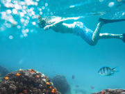 Snorkeling_Swimming_Under_Water_shutterstock