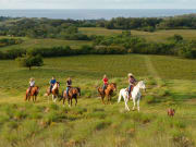 USA_Hawaii_Kauai_Horse-Green_Hill_Ocean_View