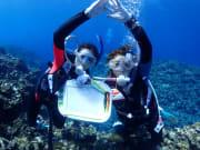 講習水中3