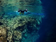 Snorkeling - Into the Blue - ellithor.comIMG_1455_1_preview