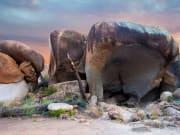 Hippo's Yawn, Wave Rock