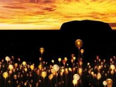Field of Light Sunrise