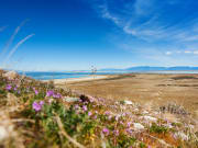 shutterstock_great_salt_lake01
