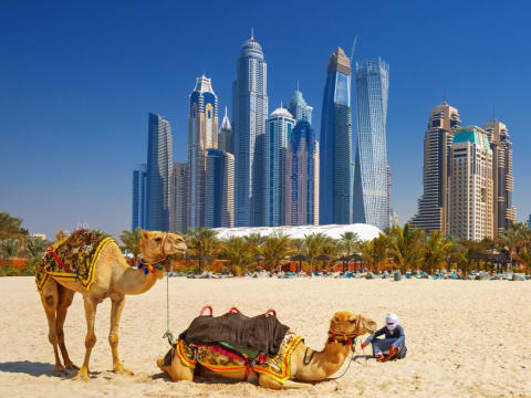 United Arab Emirates tours & activities, fun things to do in United ...