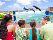 Sea-Life-Park-by-Dolphin-Discovery-1