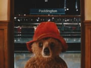 paddington bear tour