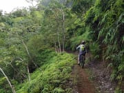 narrow_path_smol