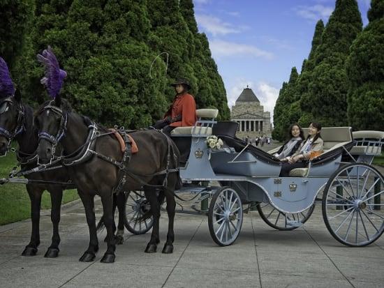 Classic Carriage _DSC7814