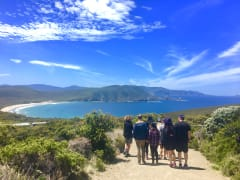Attractions at Cape Bruny