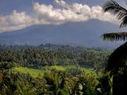Indonesia_Bali_Gunung_Batukaru_shutterstock_572096920
