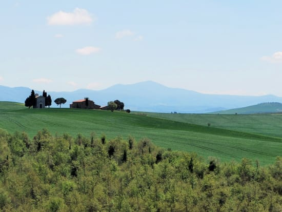 orcia_032_(3)