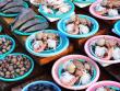 Jagalchi Seafood Market