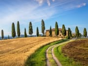 Italy_Tuscan-landscape_shutterstock_364769957