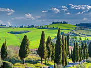 Italy_Tuscan-countryside_shutterstock_397059796