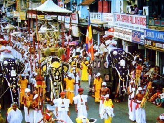 Ceylon Sunny Holidays2