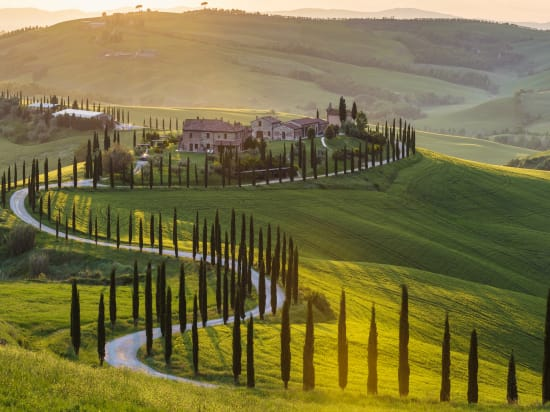 Small Group Tours of Tuscany
