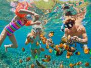 green island great barrier reef snorkeling