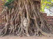 Wat_Mahathat_Head_of_Buddha_shutterstock_357804755
