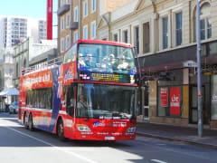Bus_web_lg